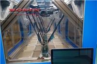 上海分揀機器人,上海博信機搬運碼垛機器人