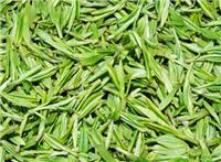 求购采购绿茶