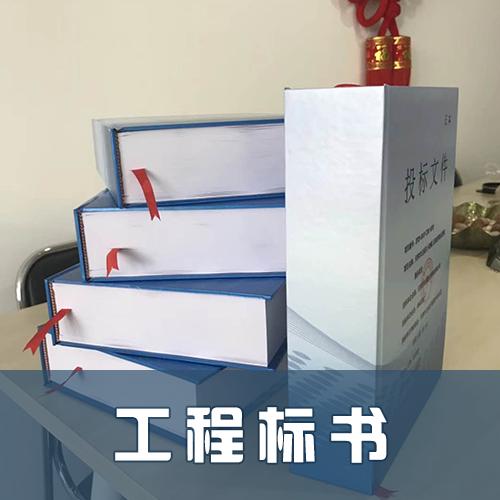 天津滨海工程标书怎么做蚨聚按时按质完成任务