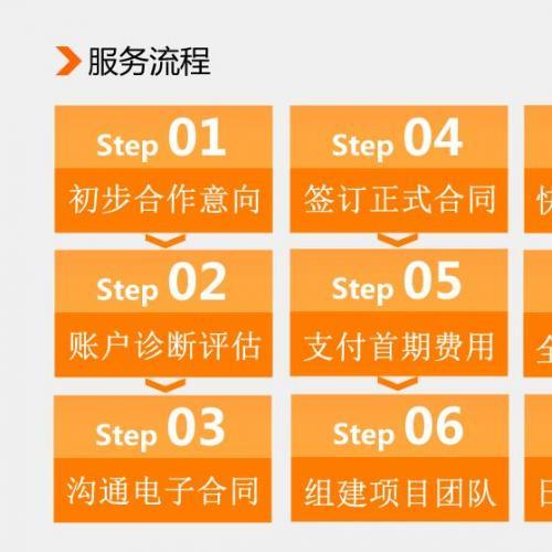 专业seo网站优化
