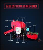鍘草機與揉搓機的區別 全自動鍘草機