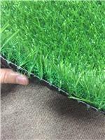 选择放心环保幼儿园人造草坪