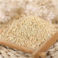泉州藜麦进口报关公司