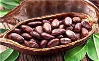 咖啡豆进口清关咖啡豆进口报关需要办理的进口资料
