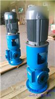 天津螺桿泵立式SNS120-54型號生產廠家