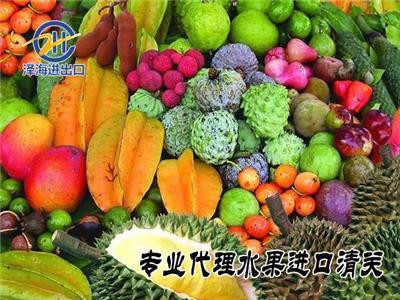 深圳代理水果进口清关