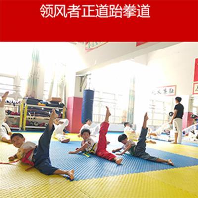 聊城儿童跆拳道培训需要多少钱