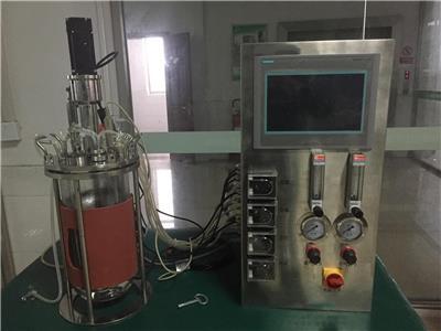 實驗室玻璃發酵罐 多聯發酵罐