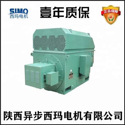 YR8006-16-800KW-10KV 高壓繞線電機