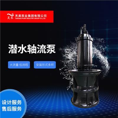 廣東水庫低揚程潛水軸流泵