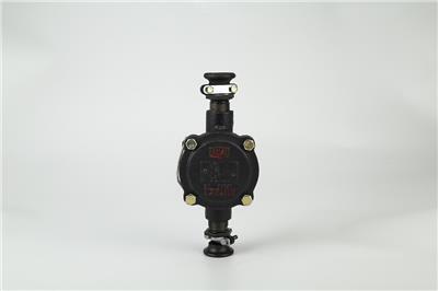 礦用隔爆電纜接線盒BHD2-25/660-2T 二通