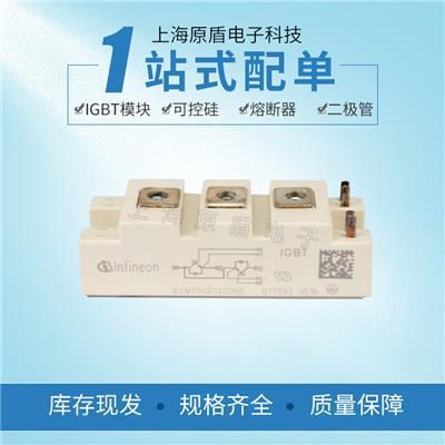 全國供應英飛凌IGBT模塊BSM75GB120DN2