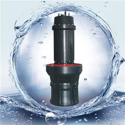 天津海水軸流泵 軸流泵 潛水泵廠家