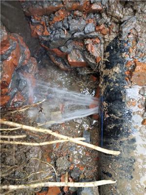 鳳凰管道漏水檢測      鳳凰檢測中心