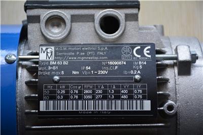 **意大利MGM剎車電機BMD132MA4/8