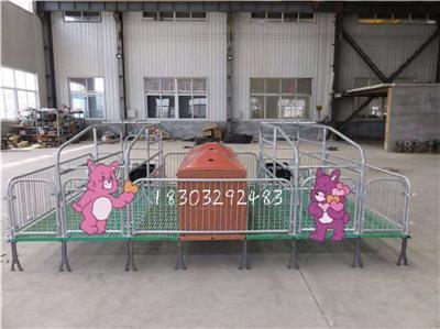 廠家設計豬用產床母豬位加寬設備產床報價廠家