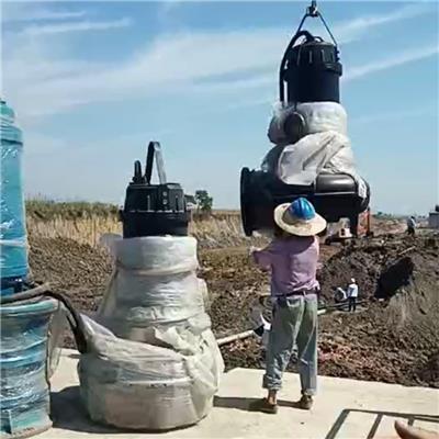 耦合式清水排污泵 天津發貨