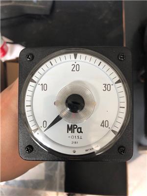 指針式電力儀表2181壓力表PIM601MPA船陸用防震儀表61L13