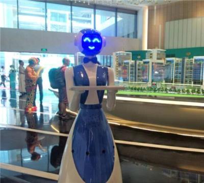 廈門新一代迎賓機器人 智能接機器人 適用多場景