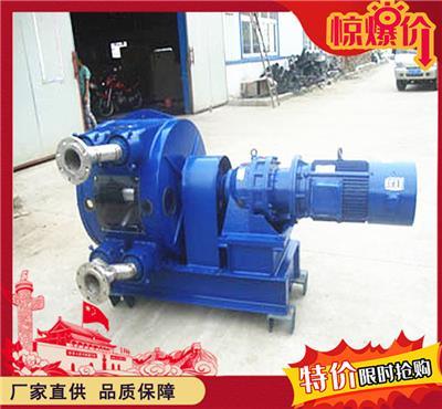 75D軟管泵價格 環保軟管泵實拍圖 軟管泵工作視頻