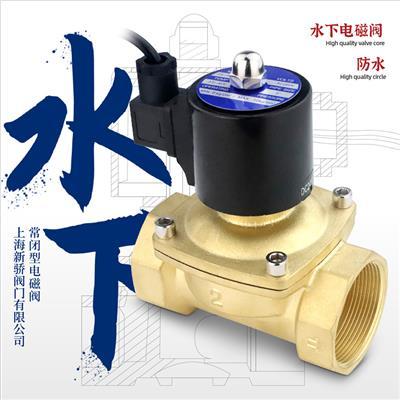 水下喷泉电磁阀SLDF内螺纹铜阀220V常闭24V电阀门4分6分1寸防水型