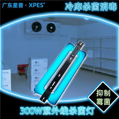 冷庫無*紫外線燈*燈*低溫啟動耐腐蝕uvc大功率廣東星普廠