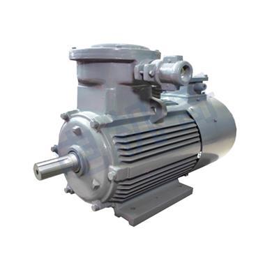 調速器變頻 YBBP系列隔爆型變頻調速三相異步電動機 適用于造紙