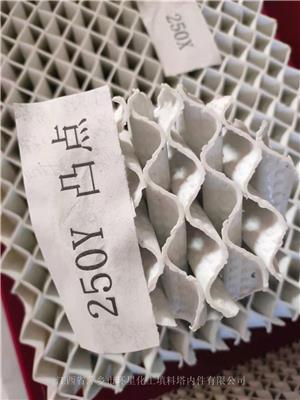 2021 新產品突突開孔規整填料、凸點陶瓷波紋填料廠家**