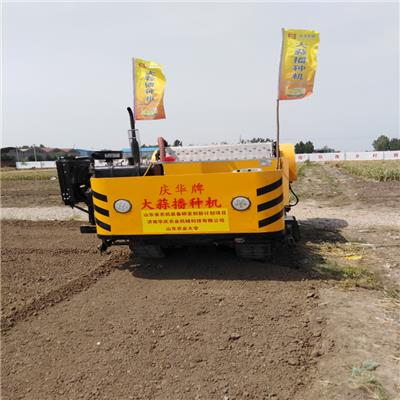 慶華自動大蒜播種機  站立長大蒜種植機
