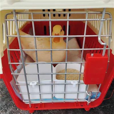 青島嶗山區寵物運輸價格表