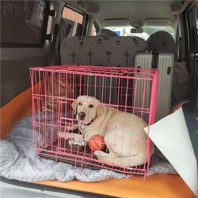 膠南寵物運輸公司