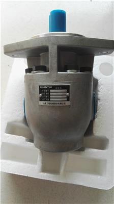 山推SD22F絞車齒輪泵J20-06-18000