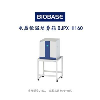 BJPX-H系列常規型號電熱恒溫培養箱BJPX-H160