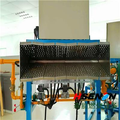 深圳森能直燃式空調燃燒器 涂裝固化燃燒機新風加熱系統 低氮燃燒器