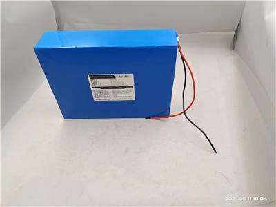 DTU鋰電池 48V 1**H