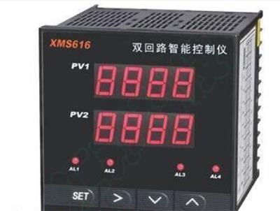 型號:WL100-WLHT-2S-300庫號:M389004管道壓縮空氣溫濕度檢測儀 含儀表