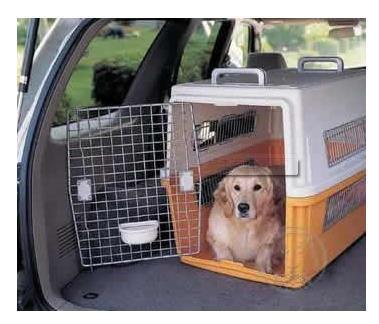 威海猫托运需要多少钱--快捷安全--