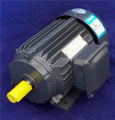 九派通 率電機YE3-30KW廠家銷售三相異步電動機