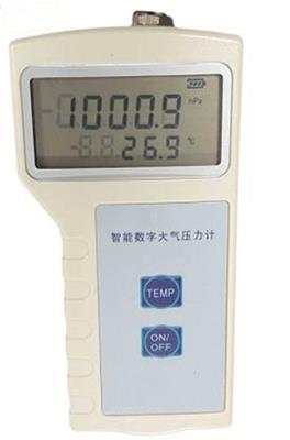 ZXX供大氣壓力表型號:ZXDPH-101庫號:M187391