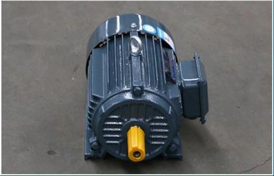 YE2系列率三相異步電動機