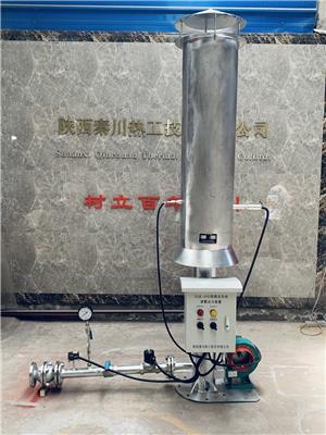 秦川熱工廠家 一體沼氣火炬自動點火系統/雙模全自動放散點火裝置