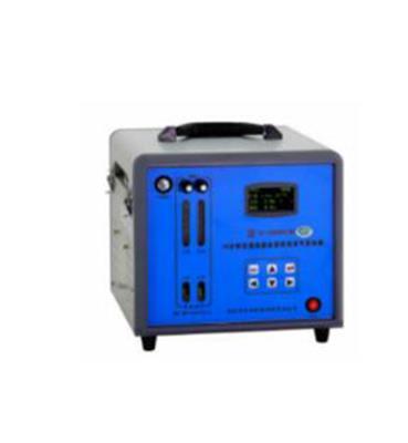 ZZZ便攜式交直流兩用恒溫大氣采樣器 型號:WT10-TH-3000BVI庫號:M375091