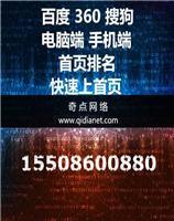 聊城seo网站优化